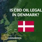 Gode råd om Hamp, Hampefrø og CBD olie