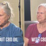 Om hampefrøolie og CBD olie – Vidste du at…